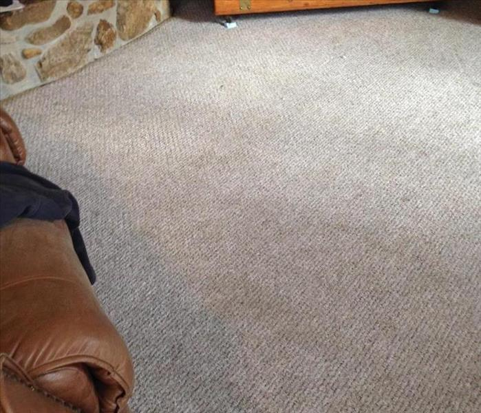 Pet Stains on Carpet in Cuba Mo. After