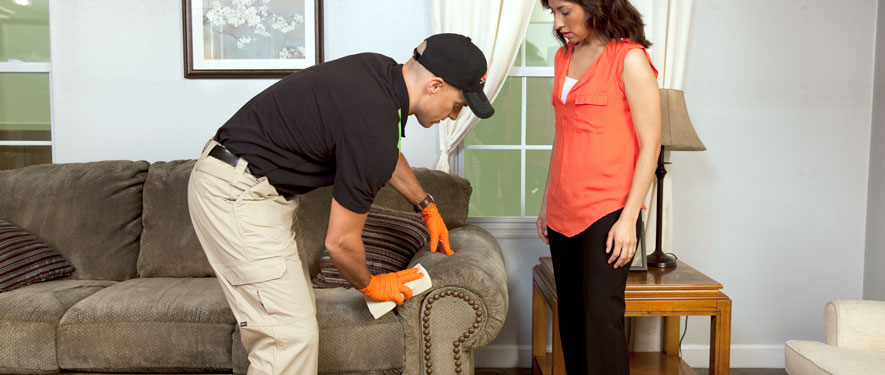 Rolla, MO carpet upholstery cleaning